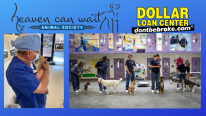 Heaven Can Wait Animal Society Announces New Partnership with Dollar Loan Center
